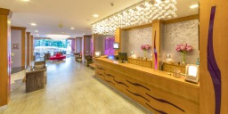 Hotel Ideal Pearl (adult only)