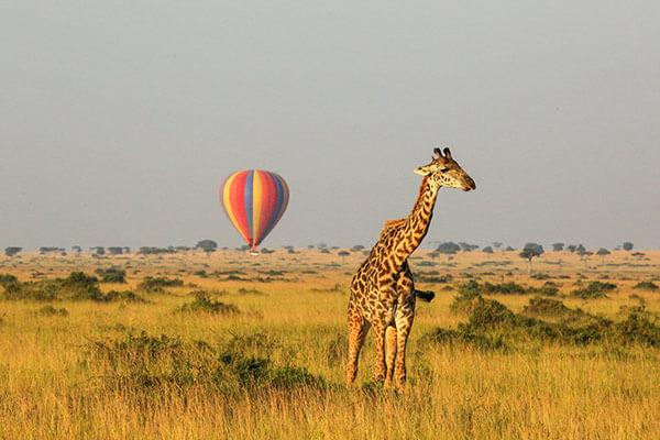 Revelion Africa De Sud si Zimbabwe