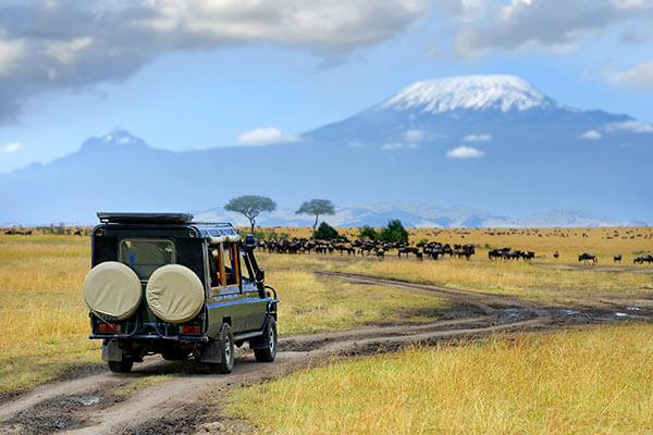 Revelion 2021 - Aventura africana