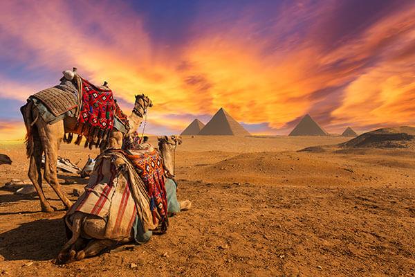 Revelion 2021 - Tinutul faraonilor